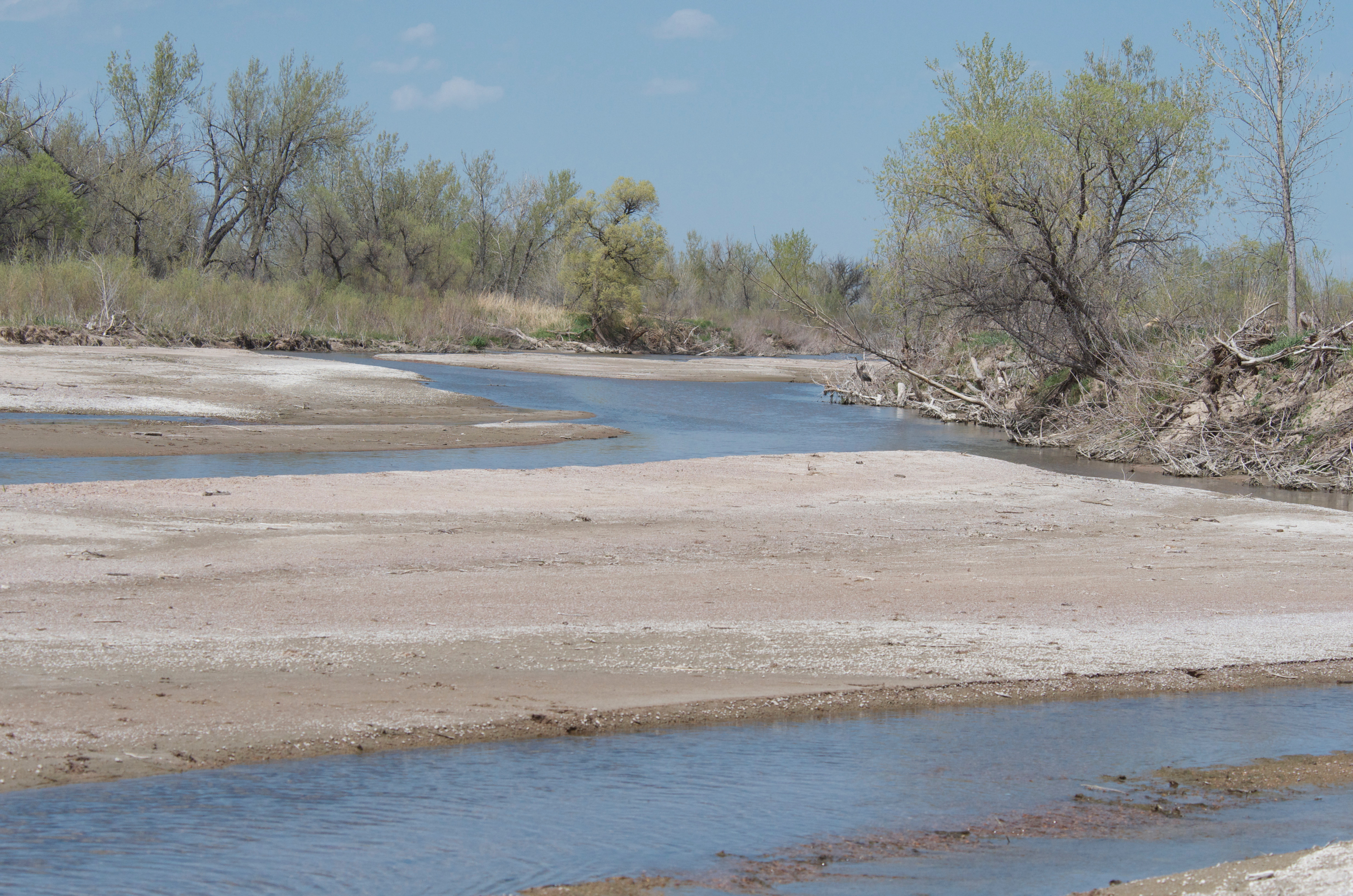 South Platte at Bravo from CR 34 Spillway (5-10-11)
